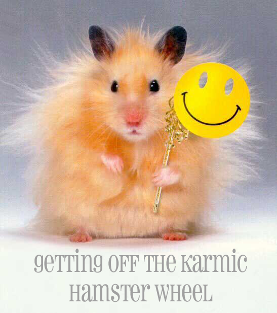 hamster with mask Magical Weight Loss - Deidre Madsen